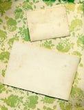Fondo floral de Rose con las tarjetas de la vendimia Foto de archivo