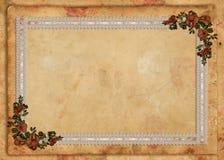 Fondo floral del cordón del pergamino Fotos de archivo