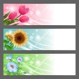 Fondo floral del ejemplo del vector horizontal Imagenes de archivo