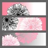 Fondo floral del ejemplo del vector horizontal Fotos de archivo libres de regalías