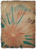 Fondo floral del grunge del papiro con el marco Imagenes de archivo
