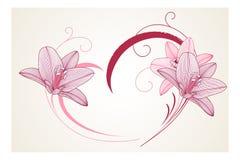fondo floral del Mano-dibujo con el lirio de la flor Tarjeta de felicitación con estilo Ilustración del vector Fotografía de archivo libre de regalías