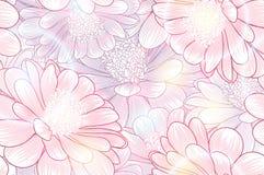 Fondo floral del mano-dibujo inconsútil con las margaritas de la flor Ilustración del vector Imagen de archivo libre de regalías