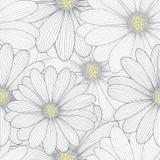 Fondo floral del mano-dibujo inconsútil monocromático con las margaritas de la flor Imagen de archivo libre de regalías