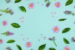 Fondo floral del marco de Flatlay con las margaritas, los wildflowers, los pétalos y las hojas Fotografía de archivo