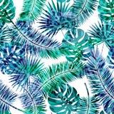 Fondo floral del modelo del verano del vector inconsútil hermoso con las hojas de palma y los estampados de animales tropicales P Fotos de archivo libres de regalías