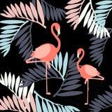Fondo floral del modelo del verano del vector hermoso con el flamenco ilustración del vector
