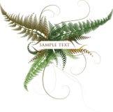 Fondo floral del otoño Imagen de archivo libre de regalías