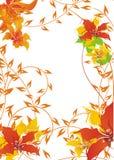 Fondo floral del otoño Fotografía de archivo libre de regalías