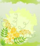 Fondo floral del resorte. Foto de archivo libre de regalías