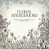 Fondo floral del vector Imagen de archivo libre de regalías