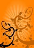 Fondo floral del ventilador anaranjado stock de ilustración