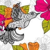 Fondo floral del verano. Pájaro Imagenes de archivo