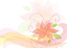 Fondo floral elegante Fotos de archivo libres de regalías