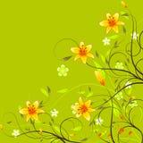 Fondo floral hermoso Fotos de archivo libres de regalías