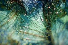 Fondo floral hermoso del abctract Imagenes de archivo