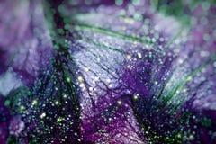 Fondo floral hermoso del abctract Fotografía de archivo libre de regalías