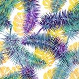 Fondo floral inconsútil hermoso del modelo del verano con las hojas de palma tropicales Perfeccione para los papeles pintados, fo Imagenes de archivo