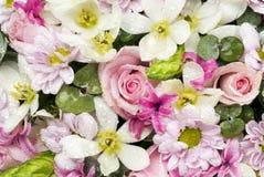 Fondo floral multicolor Fotos de archivo libres de regalías