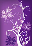 Fondo floral púrpura Fotografía de archivo libre de regalías