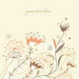 Fondo floral para los diseños del verano Fotografía de archivo