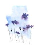 Fondo floral pintado extracto Fotografía de archivo libre de regalías