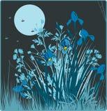 Fondo floral retro stock de ilustración