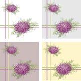Fondo floral retro. Crisantemo. Imagenes de archivo