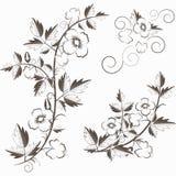 Fondo floral retro del vector con las flores Fotografía de archivo