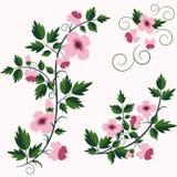 Fondo floral retro del vector con las flores Foto de archivo