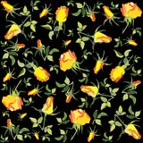 Fondo floral retro. Rose. Foto de archivo