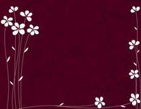 Fondo floral rojo. Fotos de archivo