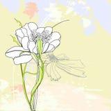 Fondo floral romántico Fotos de archivo libres de regalías