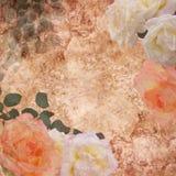 Fondo floral - rosas Fotos de archivo