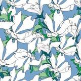 Fondo floral simple con las flores blancas en un fondo azul Texturas florales exhaustas Ornamento azul para adornar las telas, te libre illustration