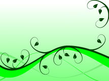 Fondo floral verde Imagen de archivo libre de regalías