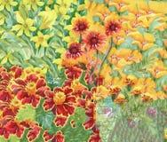 Fondo floreale astratto dell'acquerello con i bei fiori variopinti Immagini Stock Libere da Diritti