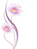 Fondo floreale con i fiori rosa, elemento di progettazione Fotografia Stock Libera da Diritti