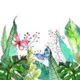 Fondo floreale con i fiori tropicali dell'orchidea, permesso dell'acquerello Immagini Stock