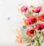 Fondo floreale con i papaveri dell'acquerello Immagini Stock
