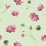 Fondo floreale con il fiore e le foglie verdi di loto immagine stock