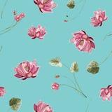 Fondo floreale con il fiore e le foglie verdi di loto fotografia stock