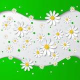 Fondo floreale con le camomille 3d illustrazione di stock