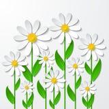 Fondo floreale con le camomille 3d Arte di carta illustrazione di stock