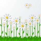 Fondo floreale con le camomille 3d sull'erba illustrazione vettoriale
