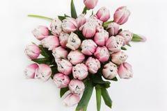 Fondo floreale dei tulipani ottimistici leggeri Fotografia Stock Libera da Diritti