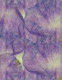 Fondo floreale del batik di lerciume di arte Colori pastelli di Stylization, acquerelli Contesto strutturato d'annata con il rosa Fotografia Stock Libera da Diritti