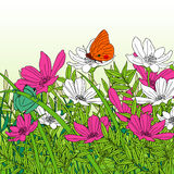 Fondo floreale del fiore Garden Fotografie Stock Libere da Diritti