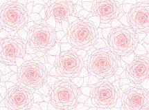 Fondo floreale delle camelie rosa su un fondo bianco Immagini Stock