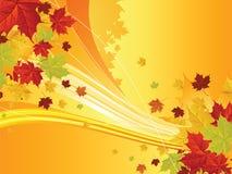 Fondo floreale di autunno Fotografia Stock